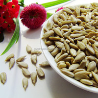 Sunflower Seeds Kernels without shell