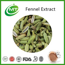 10:1 Foeniculum vulgare extract/common fennel extract powder/fennel extract