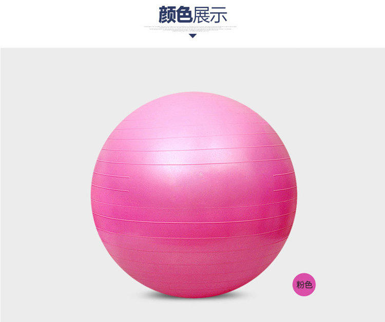 45cm 55cm 65cm 75cm 85cm Gym Ball Yoga Ball Sport Fitness Ball