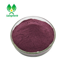 Top Quality acai berry extract powder from China famous supplier