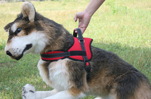 wholesale adjustable Tracking Training Dog Harness Vest Pull German Shepherd X01