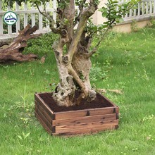 Wholesale Various Shapes Wood Planter Box Garden Flower Pot
