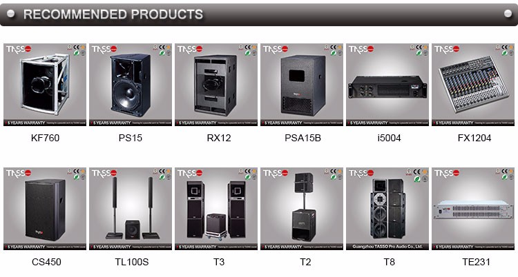 TL300S HOT Selling home theater music system indoor column speaker