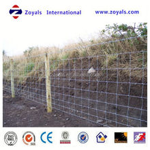 Professional ISO Manufacturer pe tape for horse fence