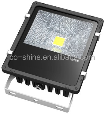 china supplier 5years warranty Meanwell driver CE ROHS outdoor IP65 50 watt 12v led flood light