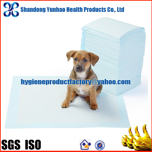 Disposable puppy absorber training pad