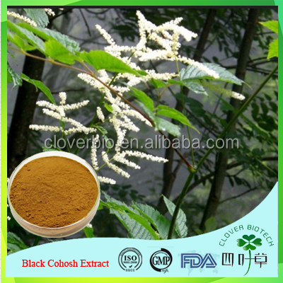 natural chinese medcine black cohosh root extract