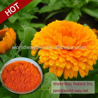 Herbal extract marigold flower extract / Natural Lutein Ester power 10%-60% by HPLC