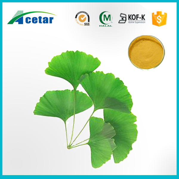 100% natural Gingko biloba leaf extract/ ginkgo biloba leaf P.E powder