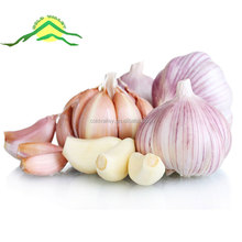 COLDVALLEY 2017 new crop wholesale natural white garlic Henan China Origin
