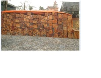 Wood, Copper,Iron,Fe,Cu,Terres Rares,..
