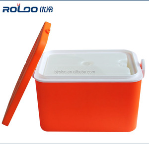 roloo 2L temperature maintaining lunch breast milk insulin carrying portable cooler box