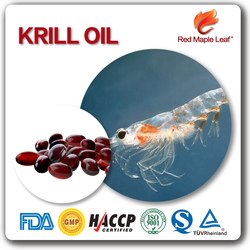 Big Manufacturer Many Years Experience Top Quality Health Food Krill Oil Softgels