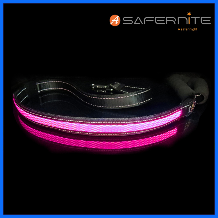 Light up LED glowing Dog Leash, USB rechargeable (cable included) Make you & your dog visible