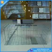 hot sale wire animal trap cage / welded wire mesh trap / live animal trap