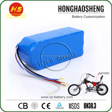 Factory Customized Akku 24Volt E-Bike 24v 10ah Li Ion Battery Pack With BMS