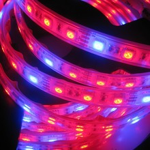 5050 60led/m led strip grow plant,led plant grow light strip with waterproof IP68 DC12V