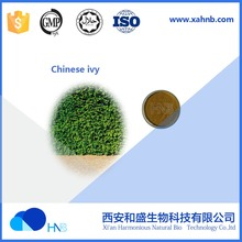 HNB Supply Chinese ivy / ivy extract / Hedera Helix Extract Powder