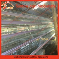 Automatic chicken feeding system for A type cage