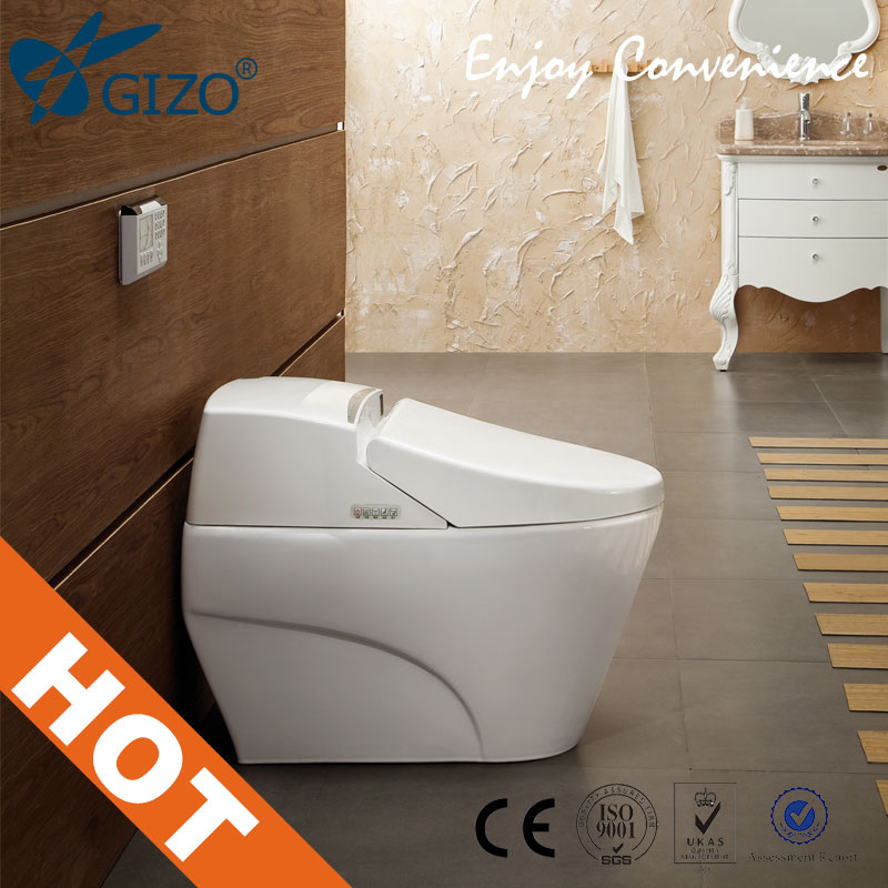 Automatic Toilets For Homes : Automatic toilet bathroom one piece new styletoilet