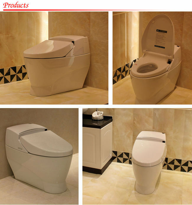 China sanitary ware intelligent toilet ,pregnant women toilet