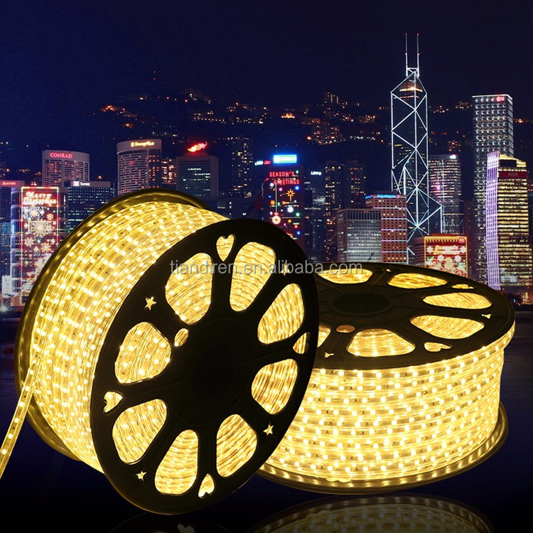 Warm White Emitting Color 5050 chip led strip rope light SMD LED light swimming pool rope light