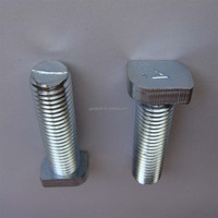 DIN261 Professional fastener stainless steel T bolt