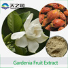 Natural Cape Jasmine Fruit Extract/ Gardenia jasminoides