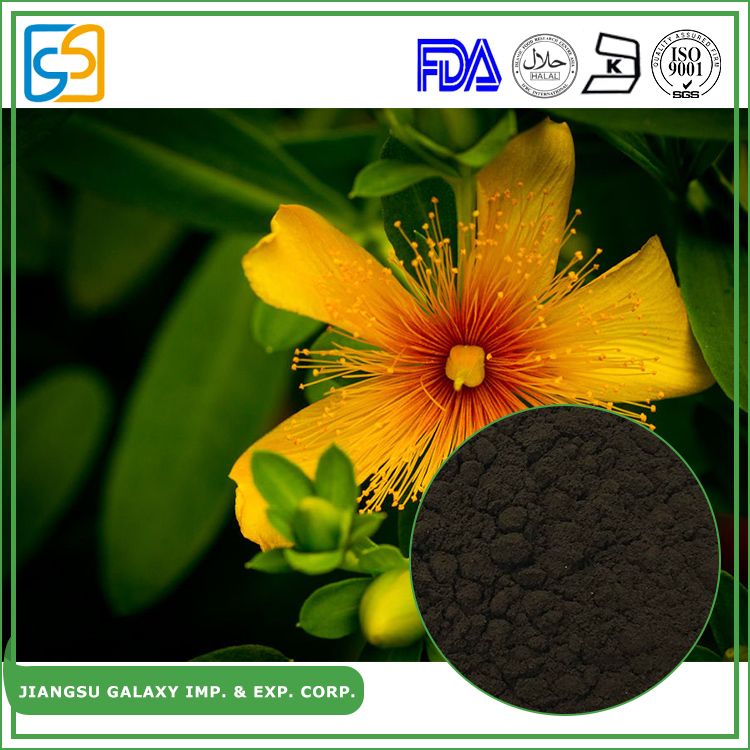 GMP factory powder hyperforin anti-depression st.john's wort