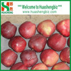 Hot Selling China Delicious Red Huaniu Apple