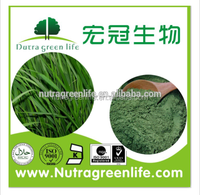 Barley grass juice powder,Organic Certified the best price/good quality