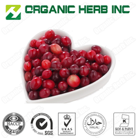 Anthocyanidins Cranberry Extract