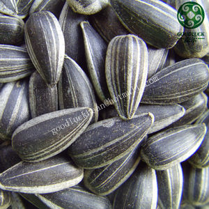 24/64 American Type 5009 Black Sunflower Seeds Price