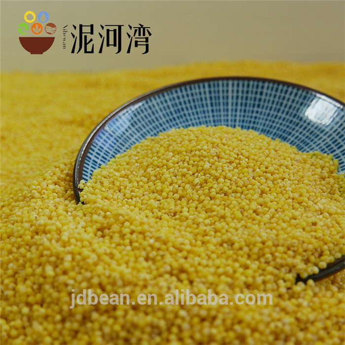 2019  crop hulled yellow glutinous broomcorn millet sticky millet