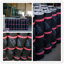 China torch on 2 ply bitumen membrane polyester roofing felt