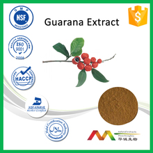 NSF&GMP Factory Supply 5%~20% Caffeine Guarana Seed Extract