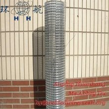 Hot-dipped Galvanized Gopher Wire Screen / Mesh (High Quality)