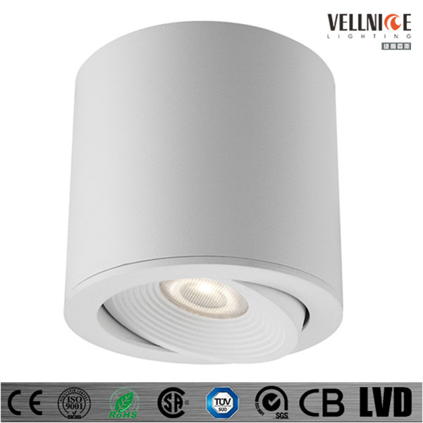 IP54 Adjustable 7W COB LED ceiling light/indoor rotatable ceiling fixture/Surface mounted LED down light /C3A0100