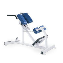 Gym equipment factory EM962 hammer strength BW back stretch
