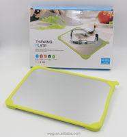 Kitchenware Quick Food Defrost Plate Thawing Defrost Board Magical Defrosting Metal Tray