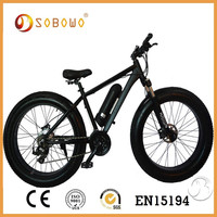 fat tyre electric bicycle two seat