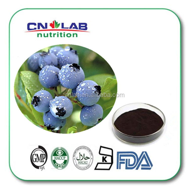 100% Natural Bilberry Extract , Bilberry P.E.