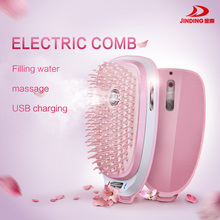 Steam Hair Brush/ Electric Facial Steamer/USB rechargeable