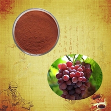 High quality and 100% natural grapefruit seed extract grape fruit powder organic grape seeds for sale