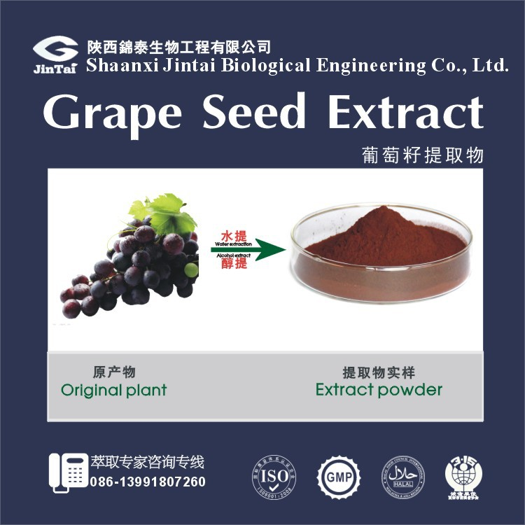 Anti-cancer Polyphenols 80% and OPC 95% Grape Seed Extract Powder