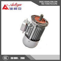 Chinese enery saving low rpm AC fan motor