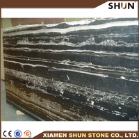 China Silver Portoro Marble,Sliver Dragon Marble Wall Cladding/marble floor tiles,Interior Decoration Indoor Metope,