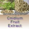 Cnidii Fructus Powder Extracts Osthole powder for Women`s health