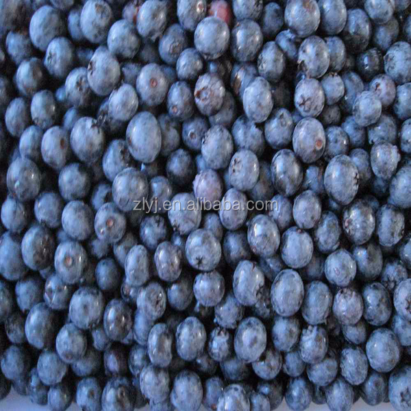 Frozen iqf bulk Wild Blueberries