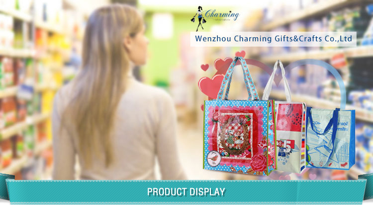 Customized reusable shoe packaging shopping pp non woven bag